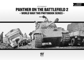 Panther on the Battlefield, Volume 2