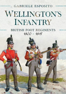 Wellington's Infantry